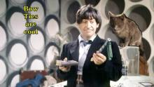 cat with 2nd doctor in tardis