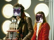 tuxedo cats as 4th doctor and 2nd romanadvoratrelundar