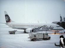 cat by an Alaska Airlines 737
