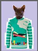 cat in ugly airplane sweater