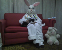 black and white cat with the Easter Bunny